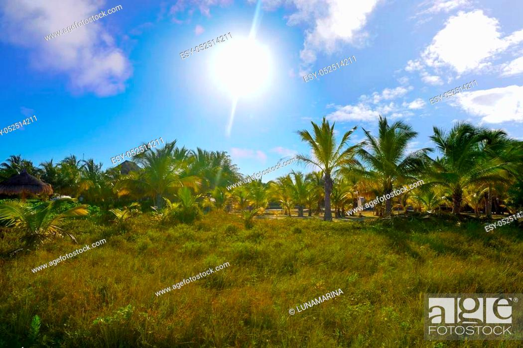 Stock Photo: Holbox Island beach in Quintana Roo of Mexico.