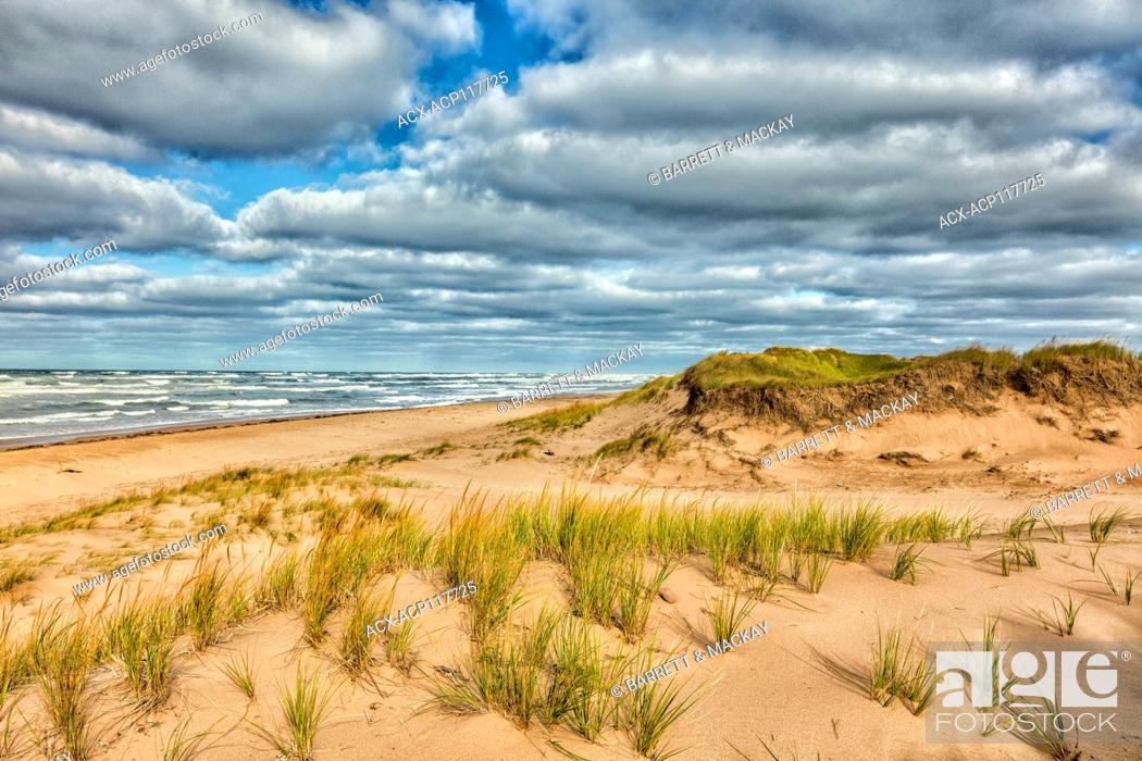 Stock Photo: Blooming Point Beach, Prince Edward Island, National Park, Canada.