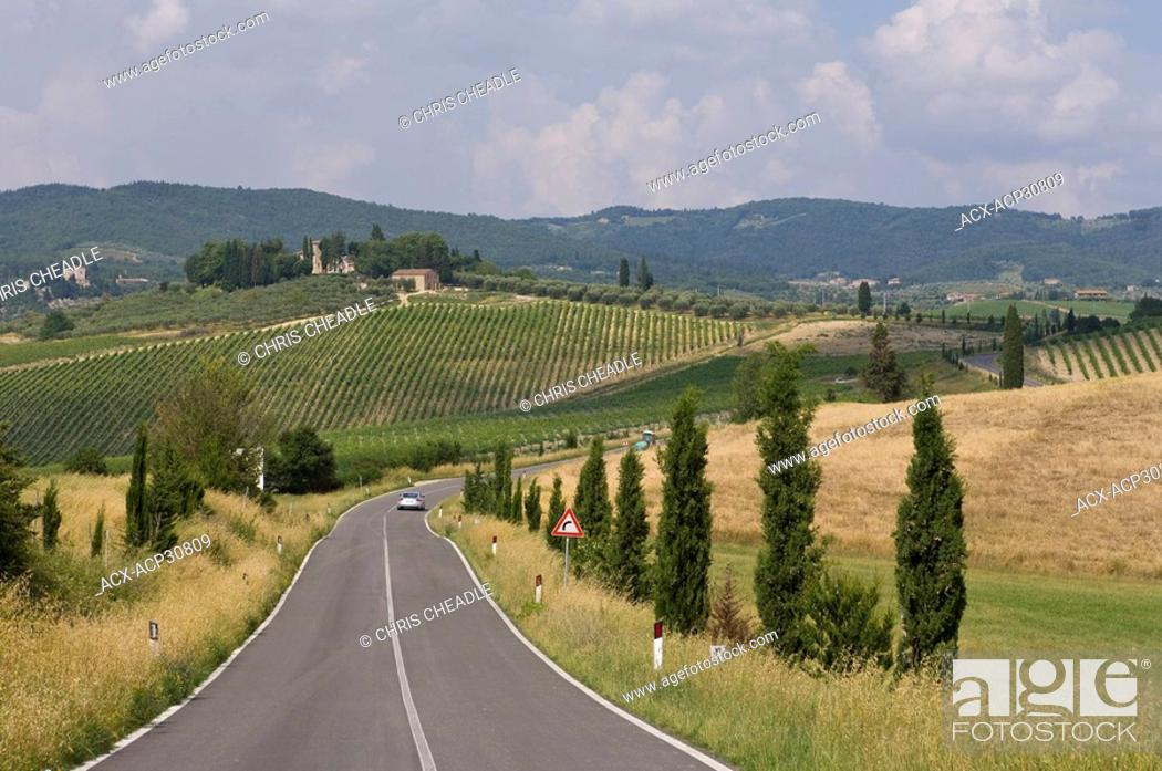 Stock Photo: Tuscan countryside near Sienna, Italy.