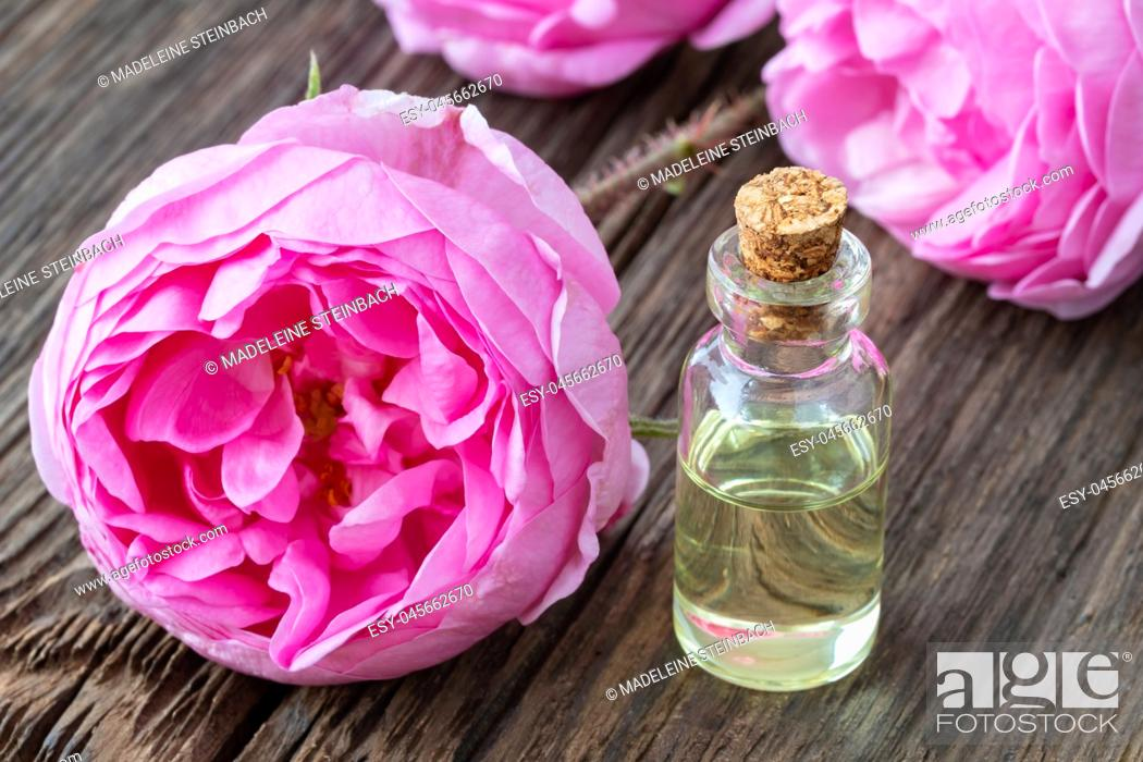 Stock Photo: A bottle of essential oil with fresh roses on a wooden background.