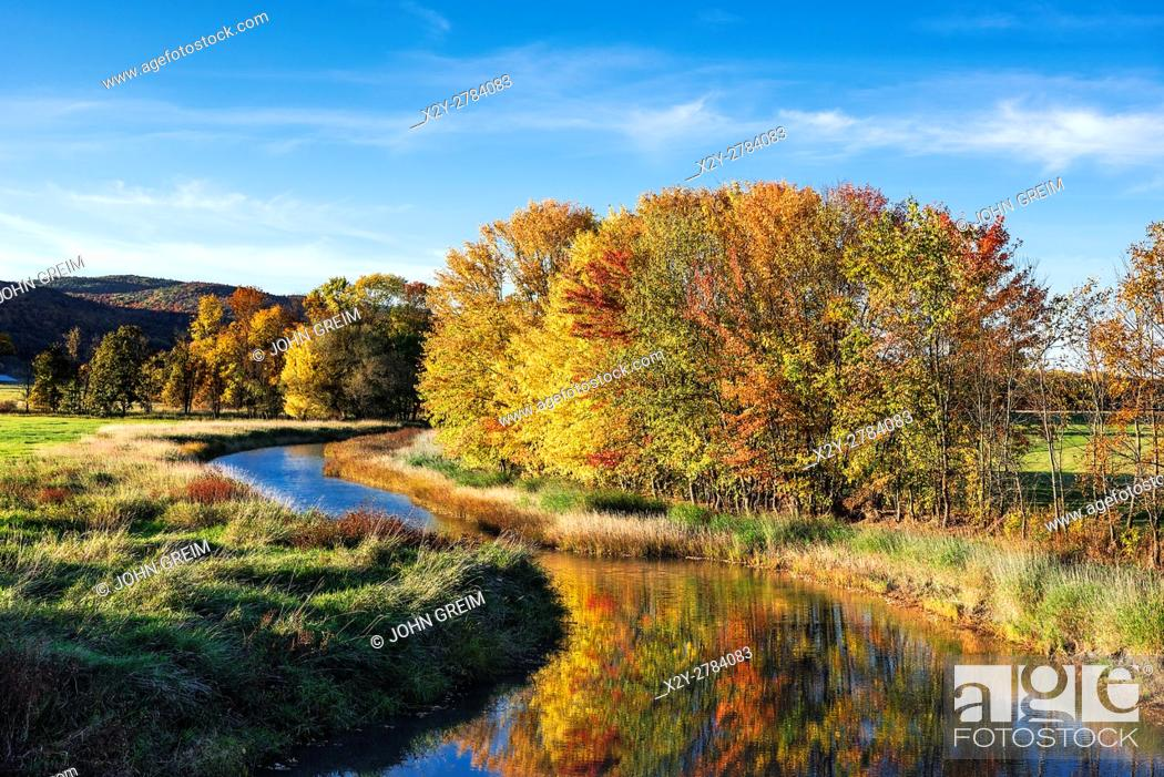 Stock Photo: Meandering steam with autumn trees, Middlebury, Vermont, USA.