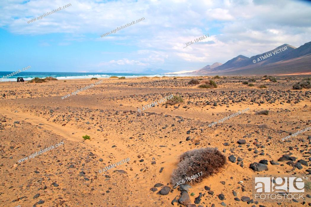 Stock Photo: Beach and park of Jandia Fuerteventura.