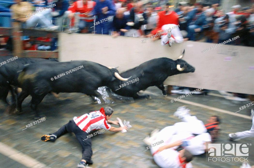Stock Photo: 'Encierro' running of the bulls, San Fermin festival. Pamplona. Navarre, Spain.
