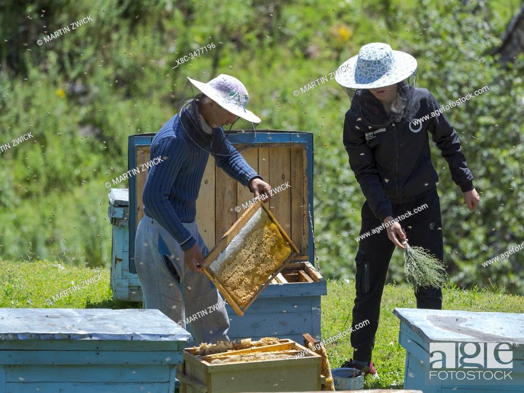 Stock Photo: Beekeepers near the mountain road from Jalal-Abad (Dzhalal-Abad, Djalal-Abat, Jalalabat) to mountain pass Urum Basch Ashuusu in the Tien Shan mountains or.