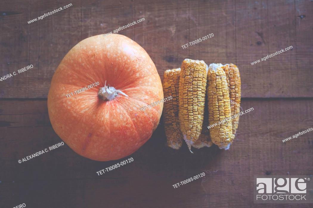 Stock Photo: Pumpkin and corn cobs.
