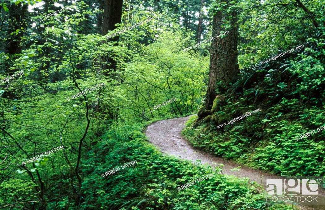 Stock Photo: Columbia River Gorge National Scenic Area. Washington, USA.