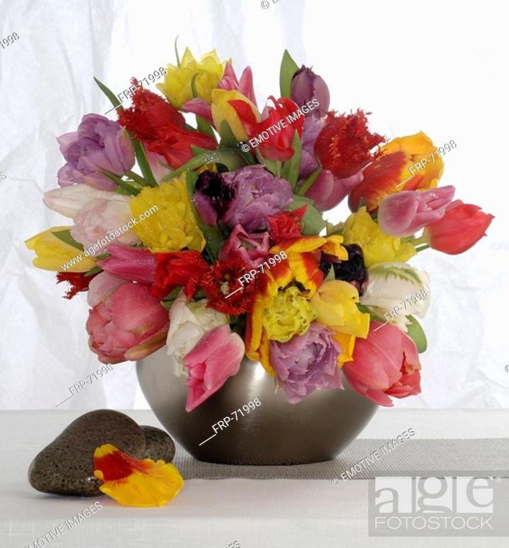 Stock Photo: Colourful tulip bunch.