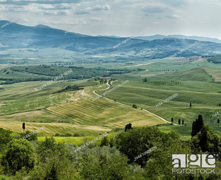 Stock Photo: Pienza, Italy, Europe, Tuscany, Toscana, scenery, agriculture, green hill, fields.