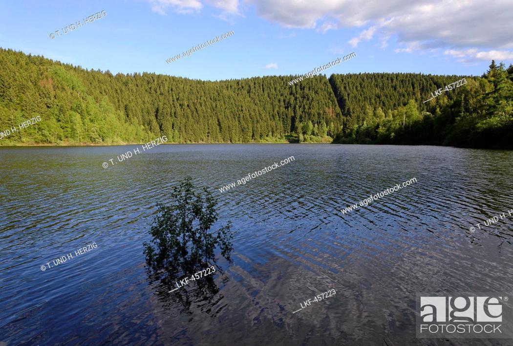 Stock Photo: Oker reservoir, Harz, Lower-Saxony, Germany, Europe.