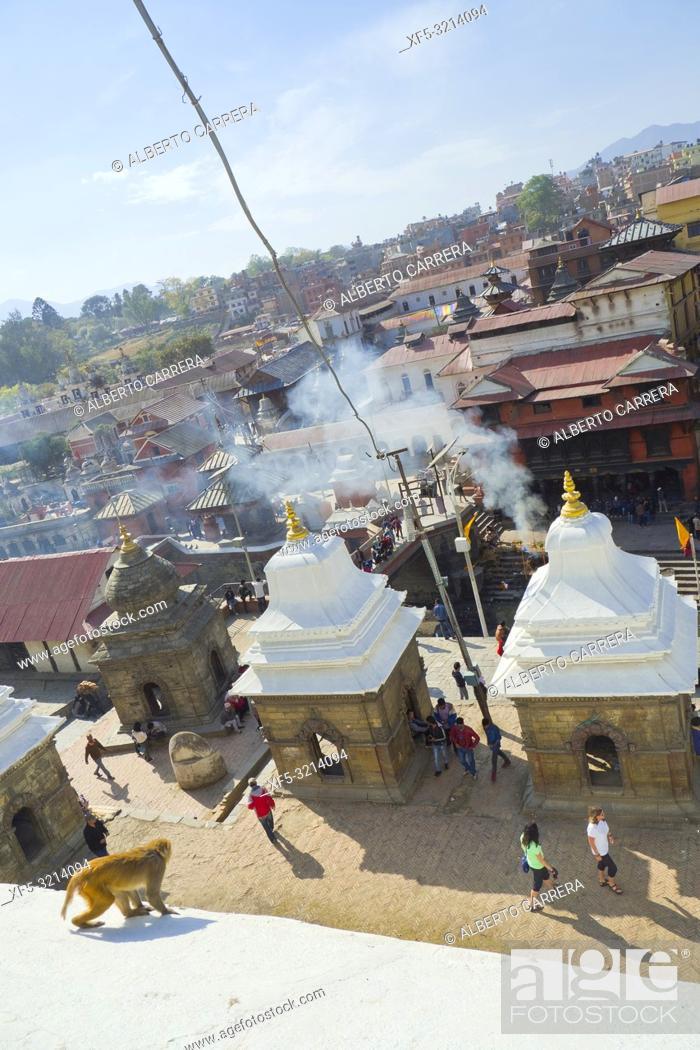 Imagen: Pashupatinath Temple, Kathmandu, Nepal, Asia.
