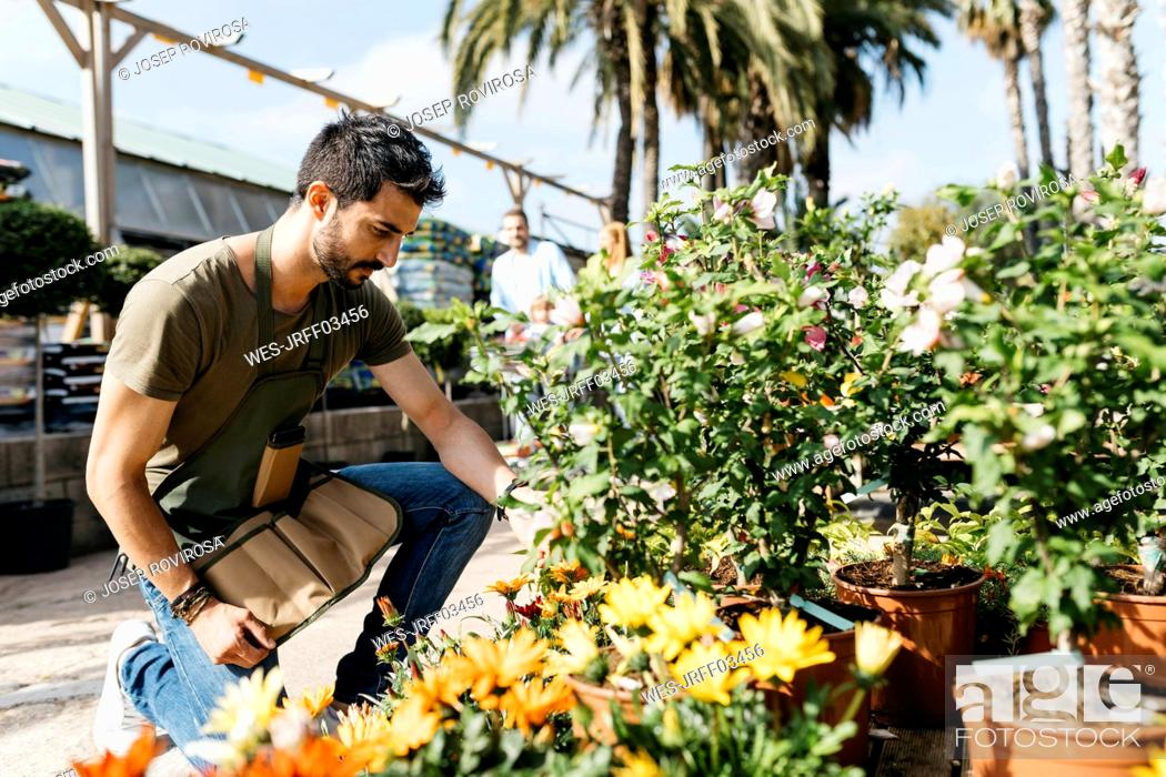 Stock Photo: Worker in a garden center caring for a flower.