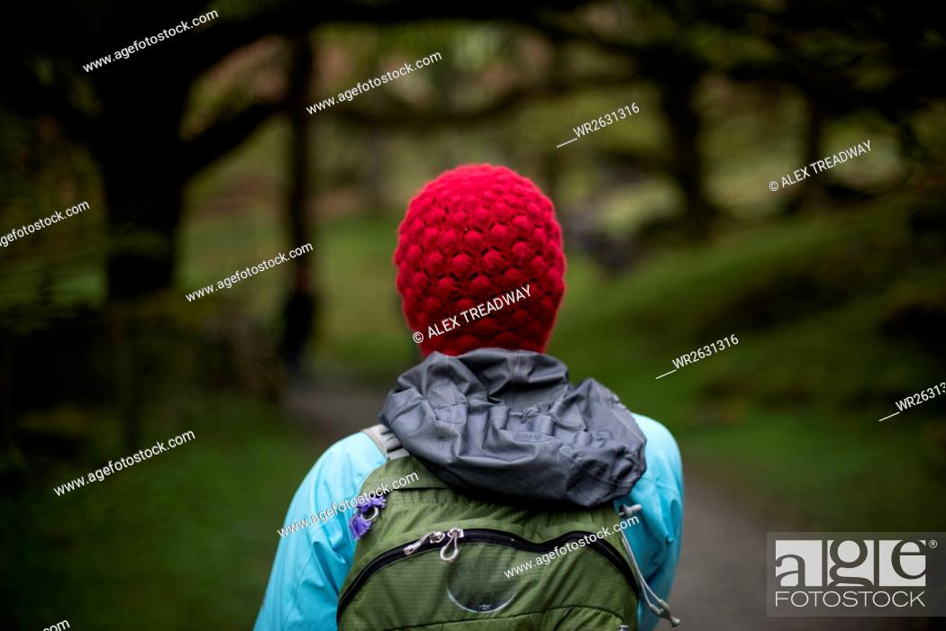 Stock Photo: A woman walks in the woods near Grasmere in The Lake District, Cumbria, England, United Kingdom, Europe.