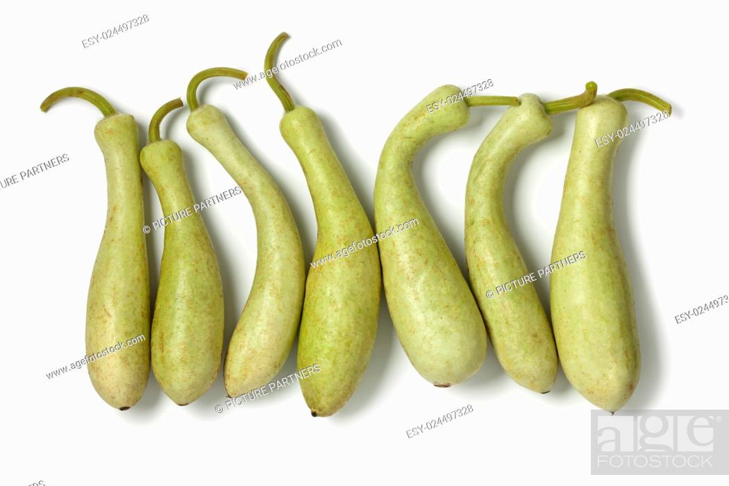 Photo de stock: Row of fresh Moroccan bottle gourds on white background.