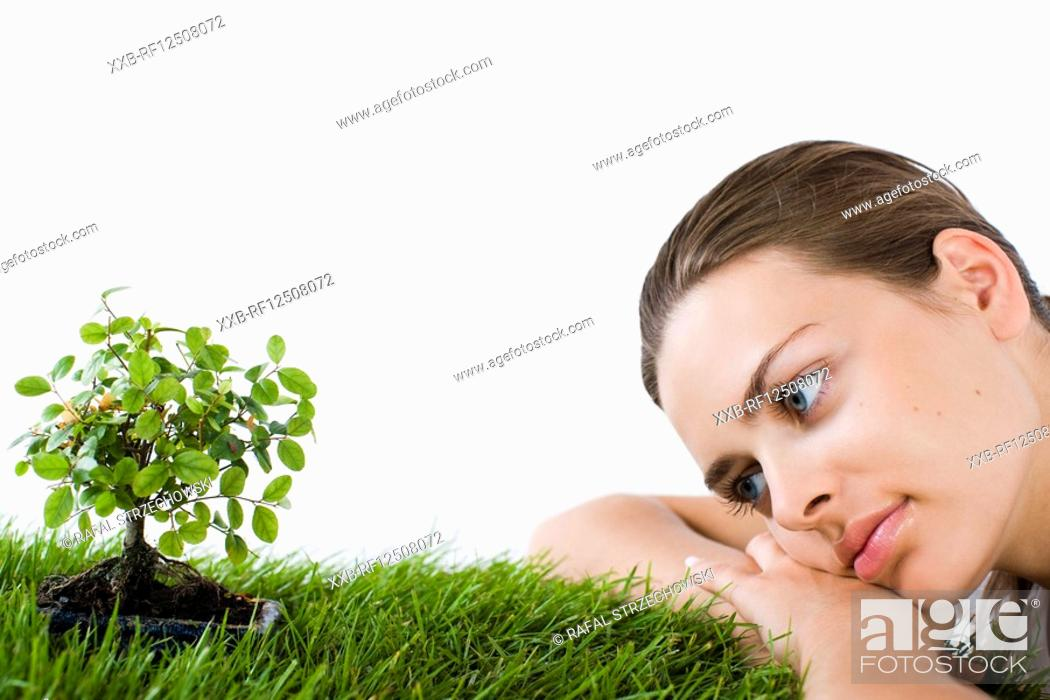Stock Photo: woman looking at bonsai tree.