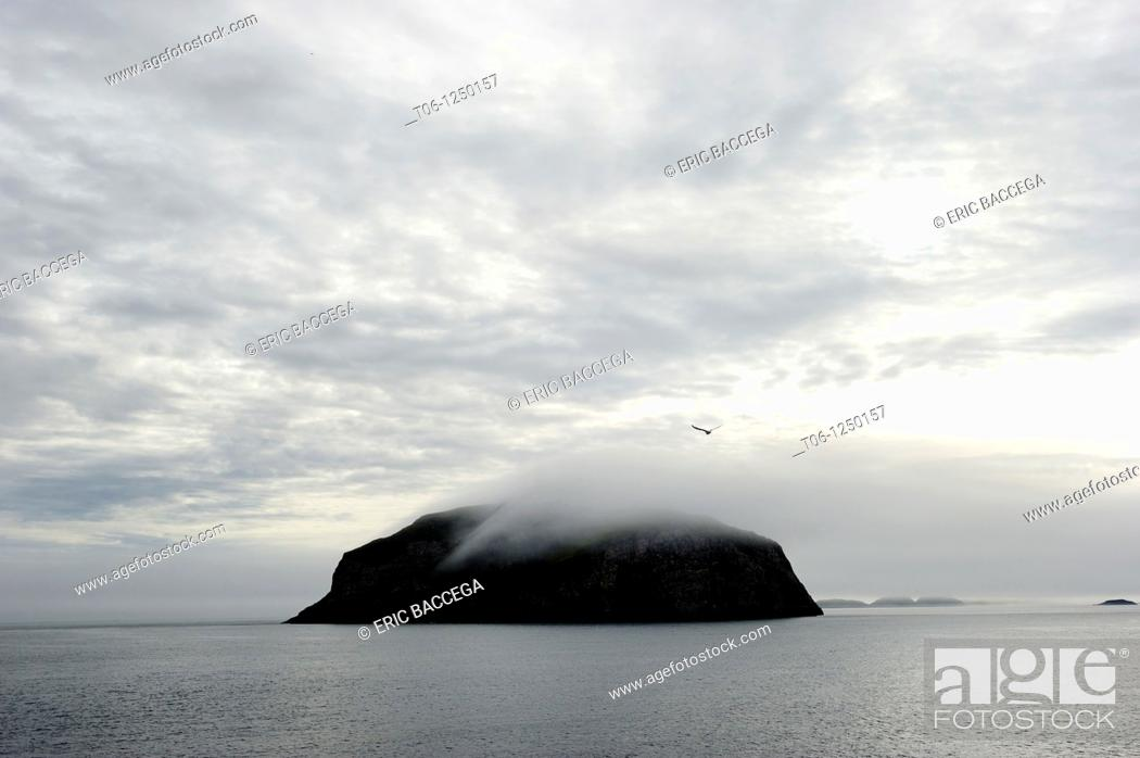 Stock Photo: Hantzch Island in the fog, off south Baffin Island, Nunavut, Canada.