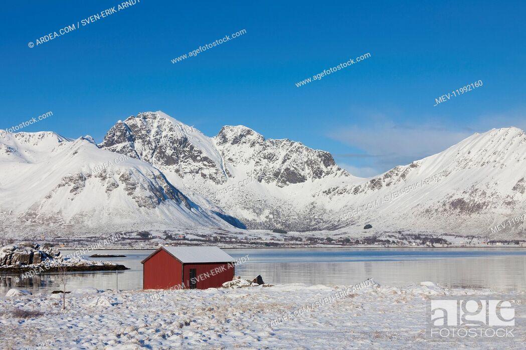 Imagen: Cottage in snowy landscape - Lofoten - Norway.