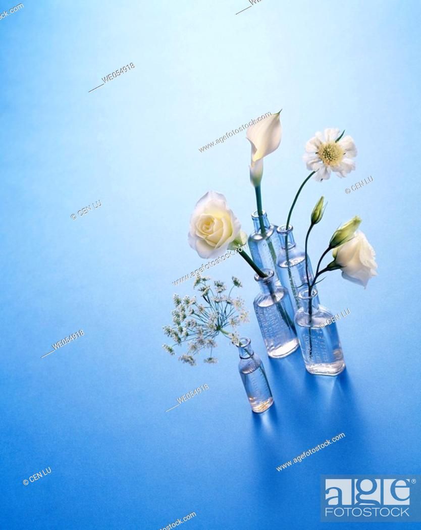 Stock Photo: Flowers in antique bottle vases on blue, white rose, white Cala lily.