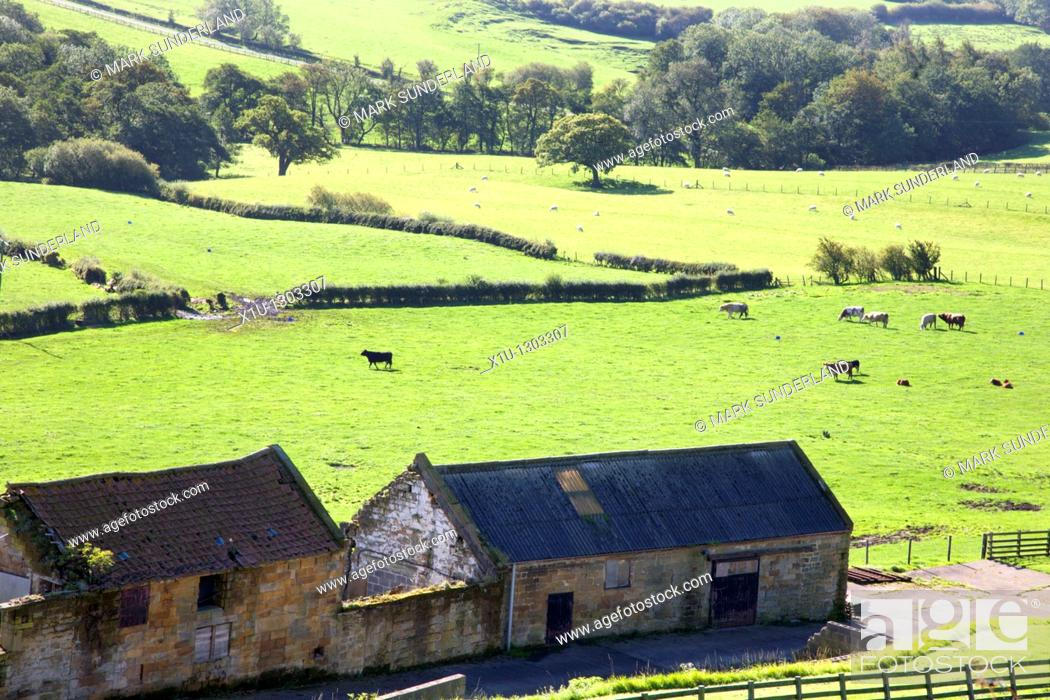 Stock Photo: Glaisdale from above Rock Head Farm North Yorkshire England.