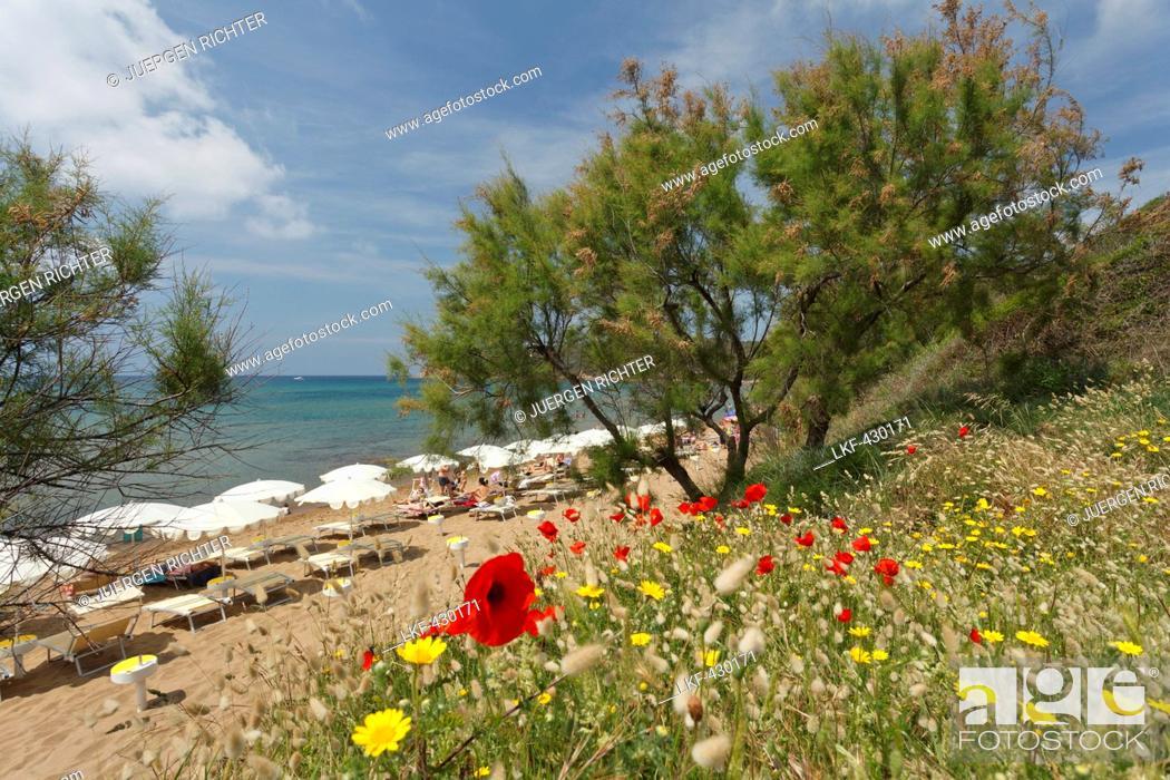 Stock Photo: Beach at Golfo di Baratti, near Populonia, Mediterranean Sea, province of Livorno, Tuscany, Italy, Europe.