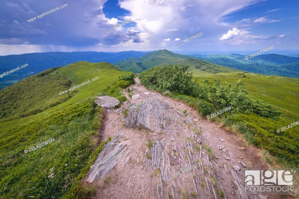 Stock Photo: Path on Wetlina High Mountain Pasture in Western Bieszczady Mountains in Poland, view with Smerek Mount on background.