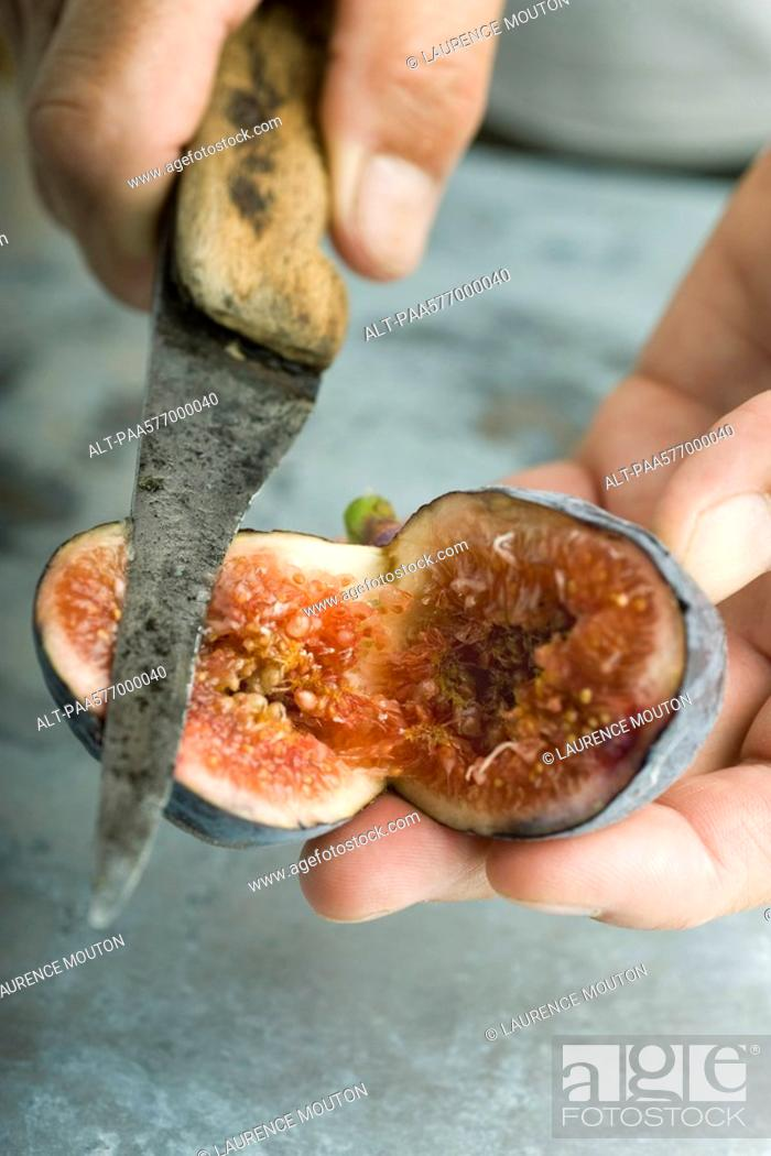 Stock Photo: Cutting a ripe fig.