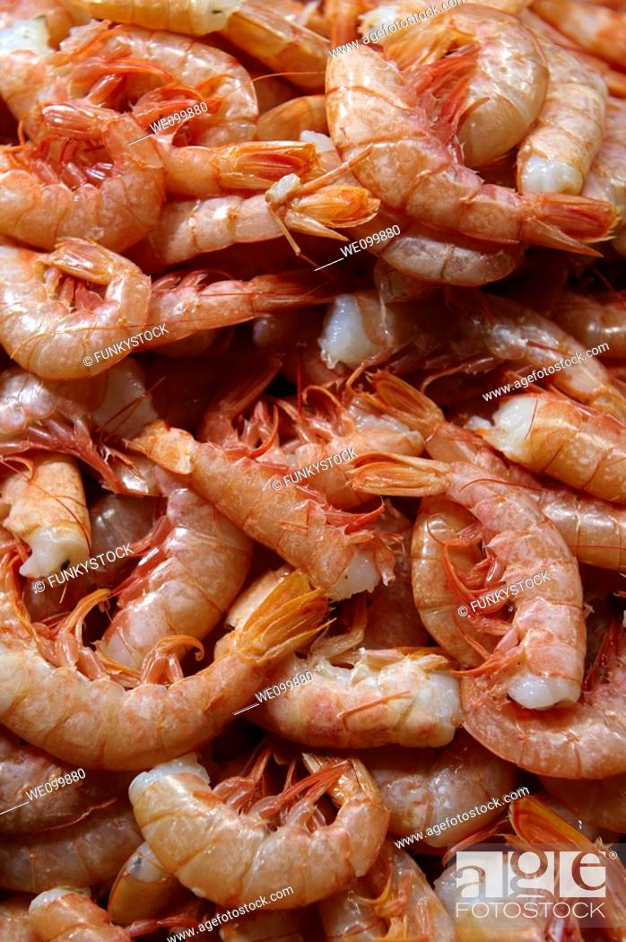 Stock Photo: Fresh prawns - Venice Rialto Fish Market.