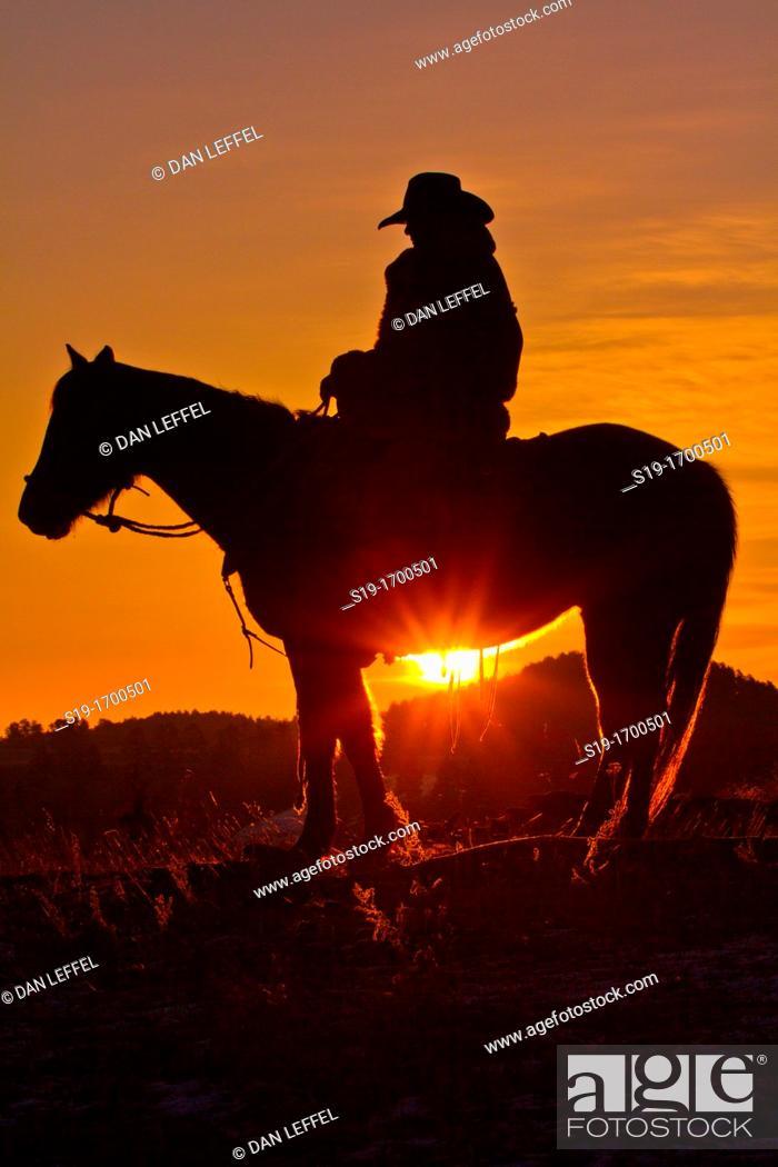 Stock Photo: Cowboy silhouette riding horse.