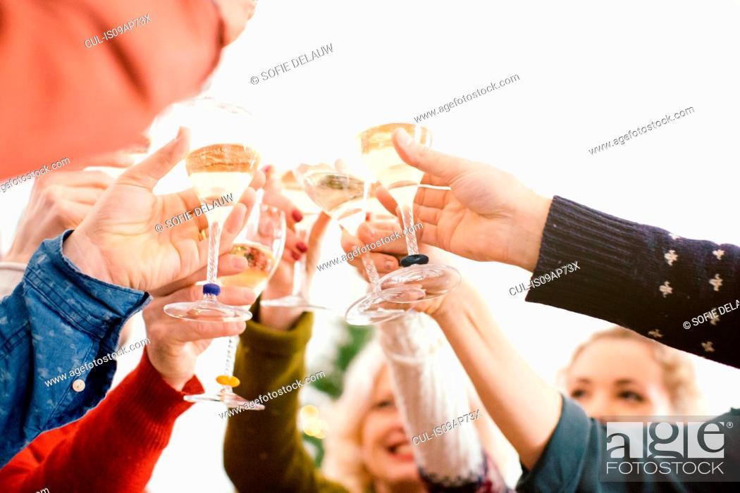Stock Photo: Family toasting at family Christmas party.