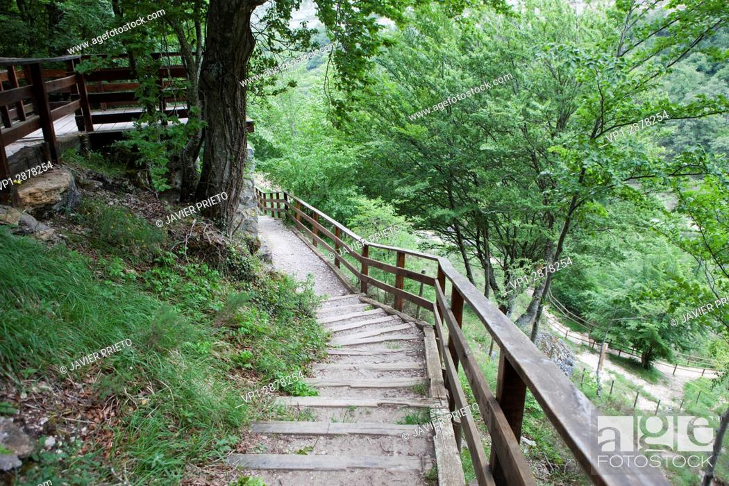 Stock Photo: Wooden walkways and lookouts that run through the natural space of Covalagua. World Geopark Las Loras. Palencia. Castilla y León. Spain.