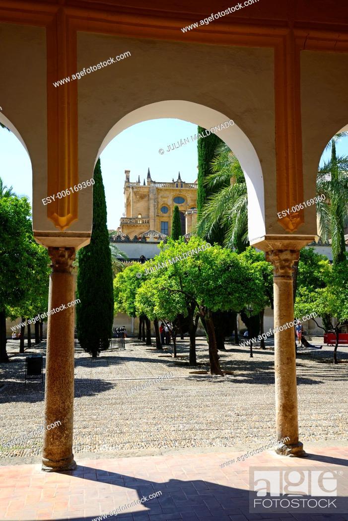 Stock Photo: Patio de los Naranjos in the Catedral de Córdoba, Andalucía, Spain.