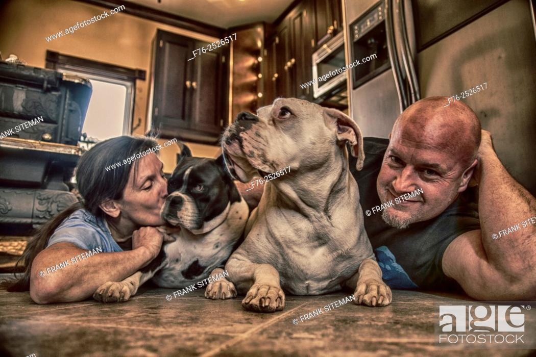 Stock Photo: Middle aged couple on floor of kitchen with their two boxer dogs, one being kissed.