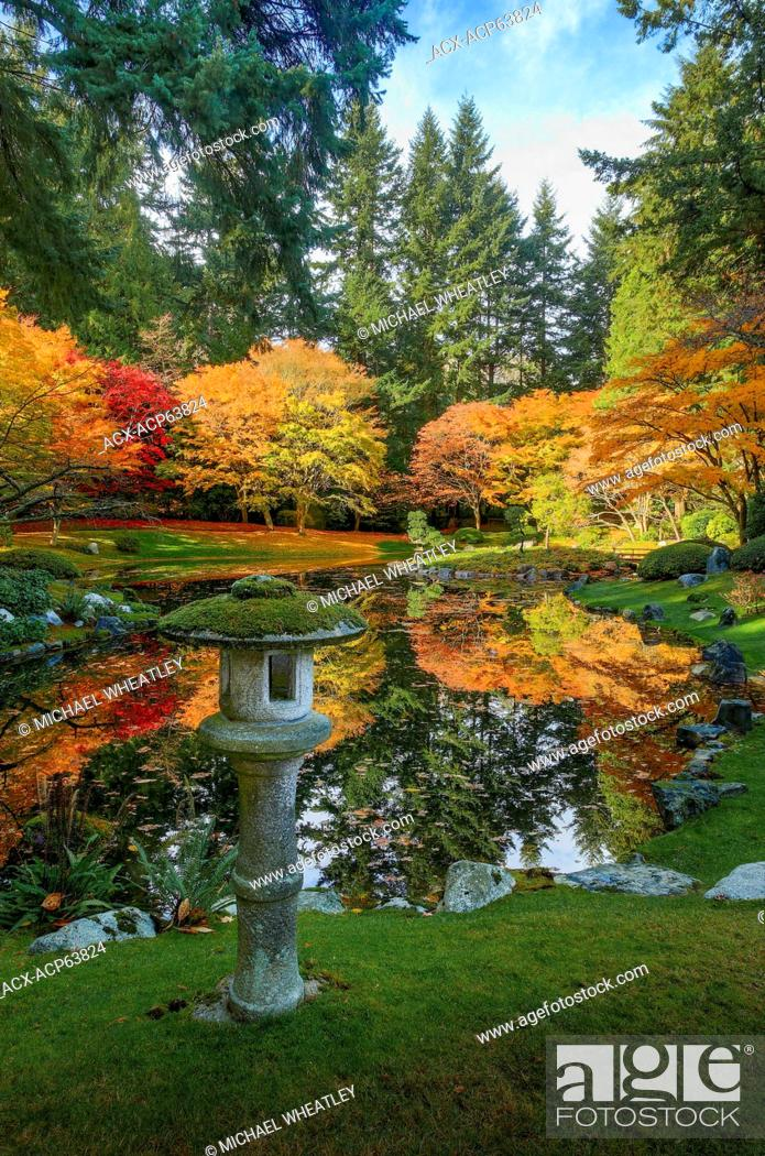 Stock Photo - Stone lantern and pond, Nitobe Memorial Garden, a traditional Japanese garden, University of British Columbia, Vancouver, British Columbia, ...