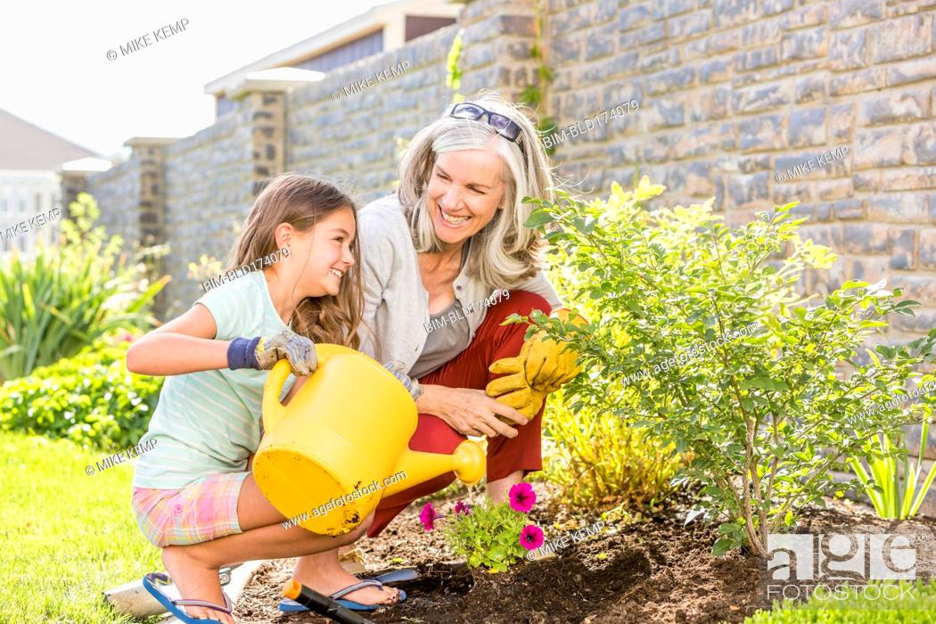 Stock Photo: Caucasian grandmother and granddaughter gardening in backyard.