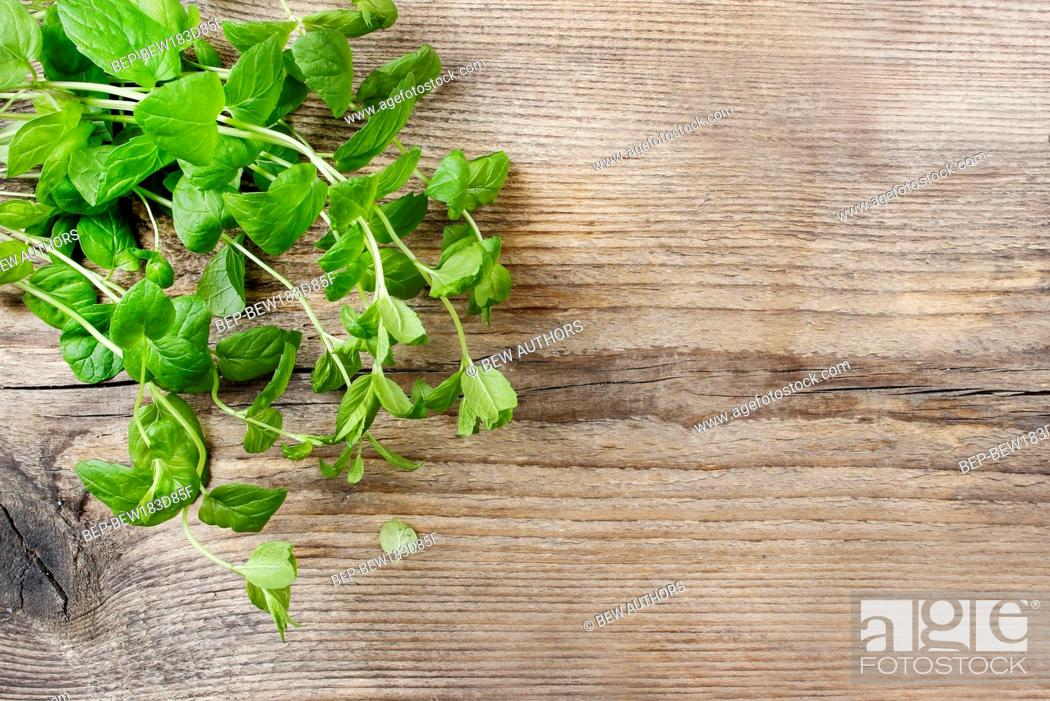 Imagen: Mint leaves on wooden table.