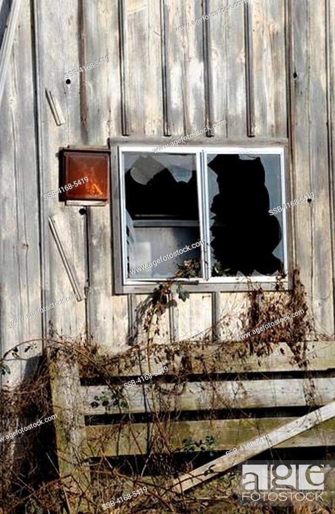 Stock Photo: USA, WASHINGTON STATE, NEAR MOUNT VERNON, OLD BARN FALLING APART, WINDOW WITH BROKEN GLASS.