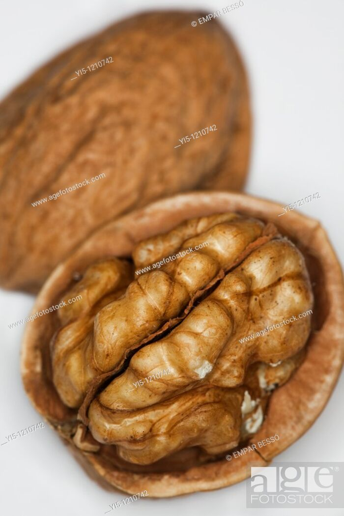 Imagen: walnut close-up.