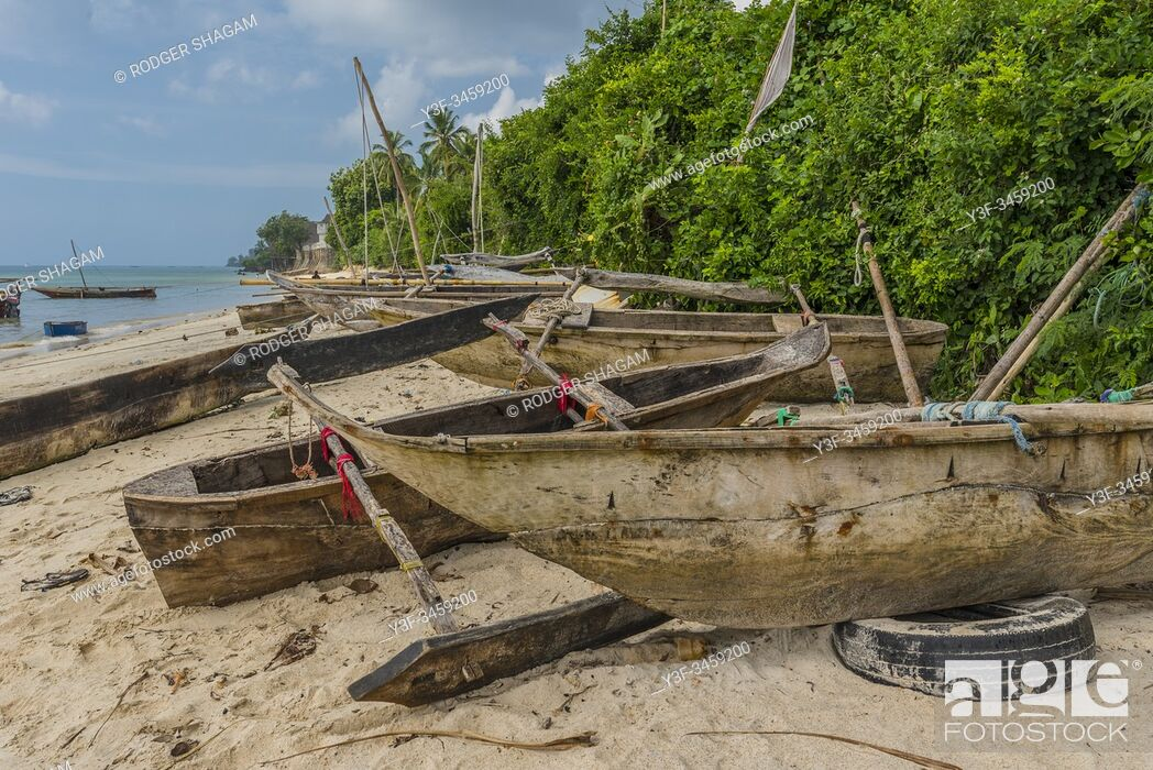 Stock Photo: Zanzibar. Old dhow-styled sailing canoes pulled up above the high-water mark on the beach. Used for fishing.