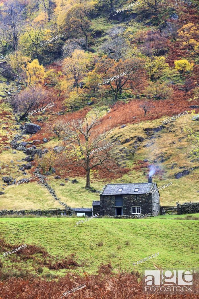Stock Photo: Alisongrass Hoghouse near Stonetwaite in the Lake District National Park.