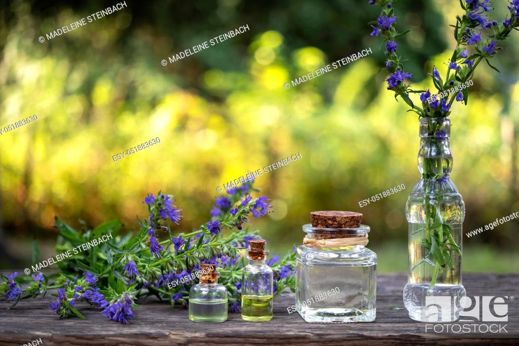 Stock Photo: Bottles of essential oil with fresh blooming hyssop twigs in the background.
