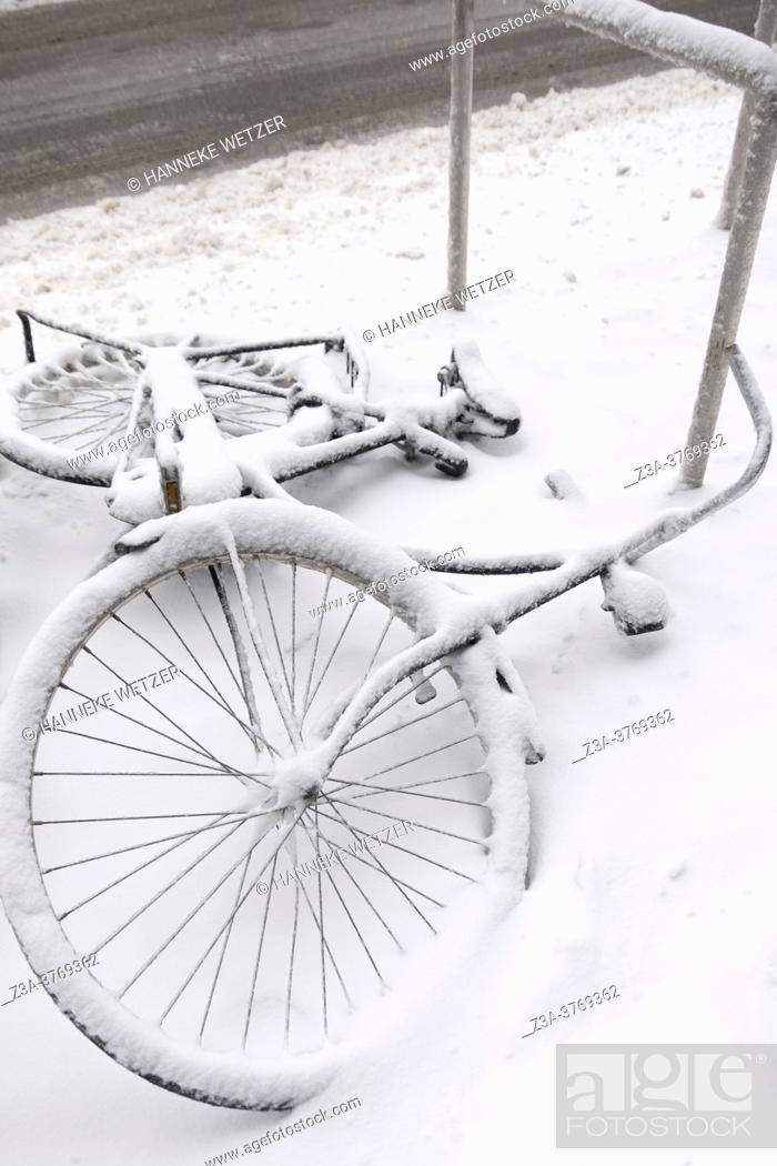 Imagen: Undersnowed bicycles, Eindhoven, The Netherlands, Europe.
