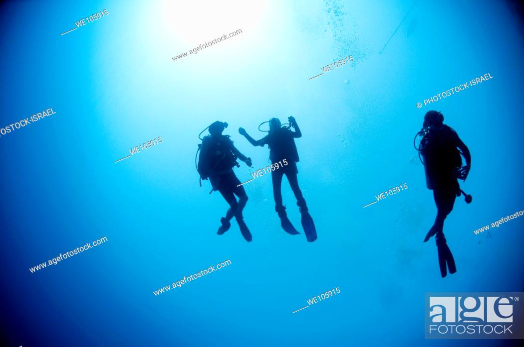 Stock Photo: Cuba divers in the water photographed at Ras Mohammed National Park, Red Sea, Sinai, Egypt,.