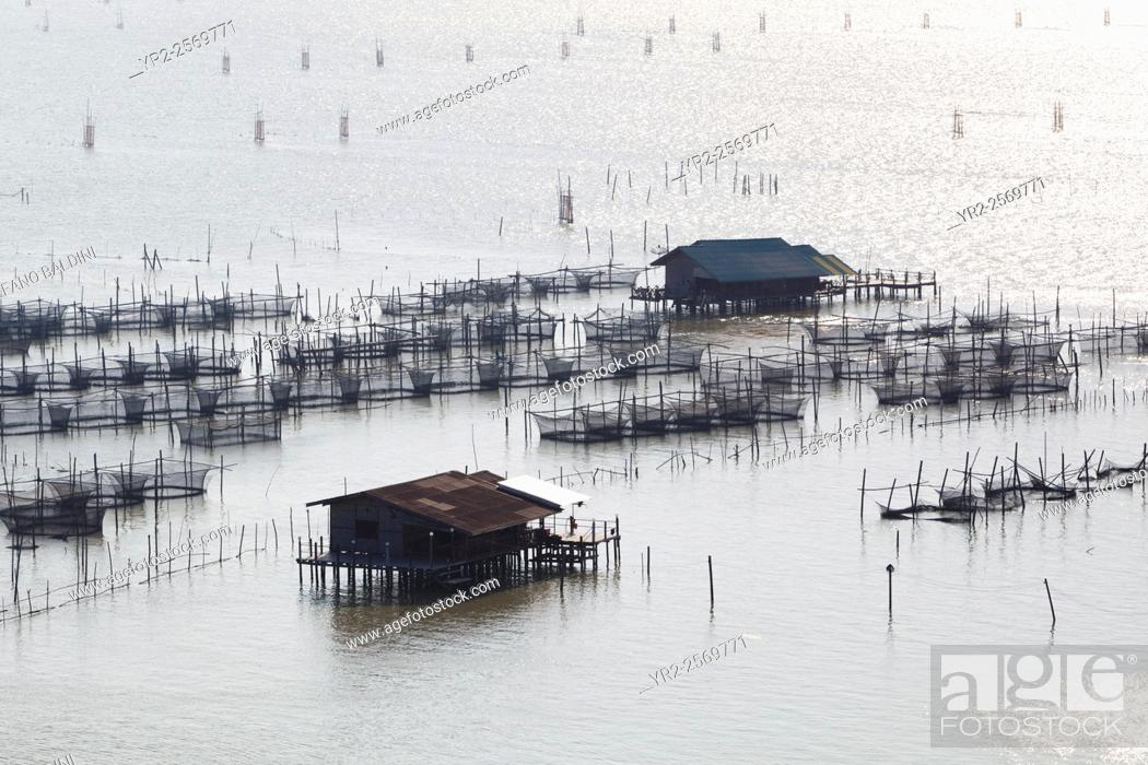 Imagen: Fish farming in Songkhla lake in southern Thailand.