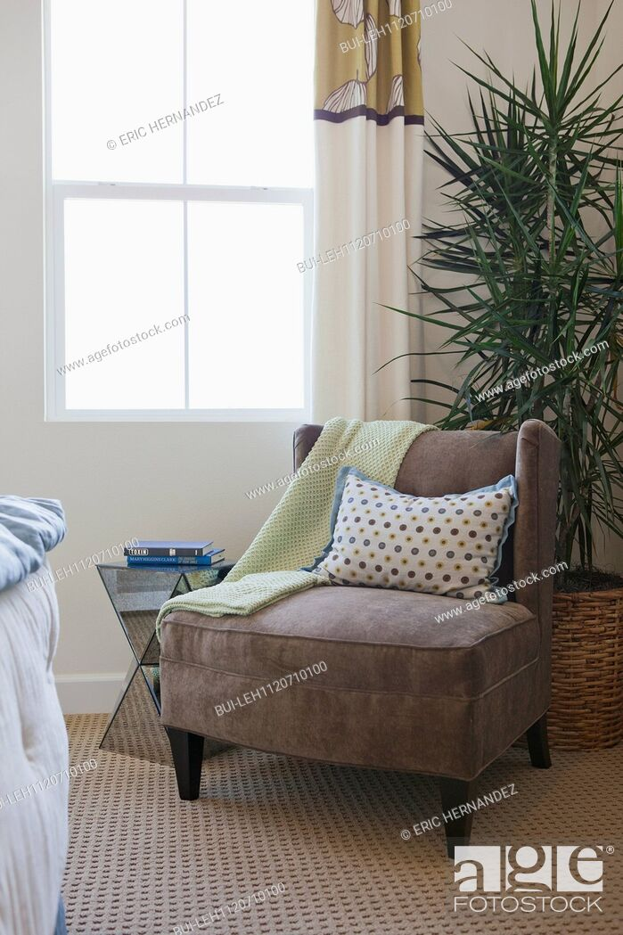 Imagen: Armchair with house plant by window at home; San Marcos; California; USA.