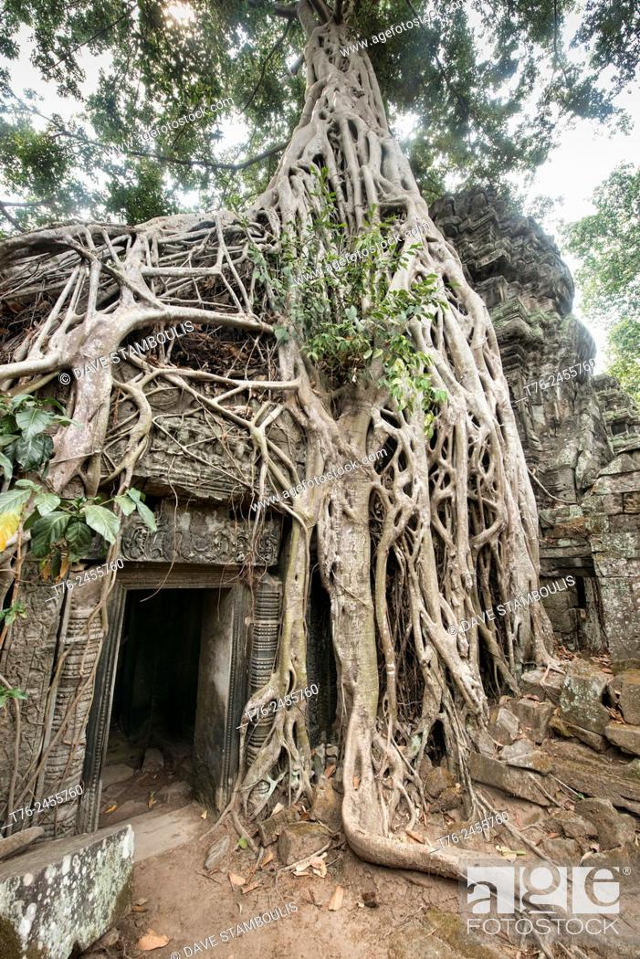 Stock Photo: Ta Phrom, the jungle temple at Angkor Wat in Siem Reap, Cambodia.