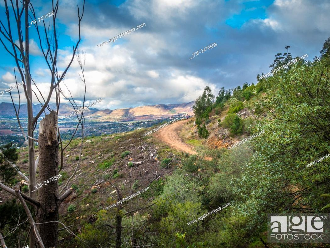 Stock Photo: A gravel road curves around the side of a mountain slope. Recently cleared forestation. A cloudy but clear day. Cape Town, South AFrica.