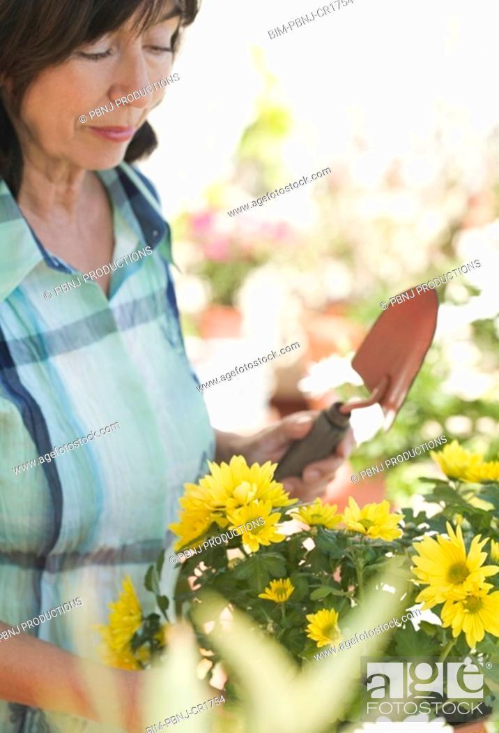 Stock Photo: Close up of senior woman gardening.