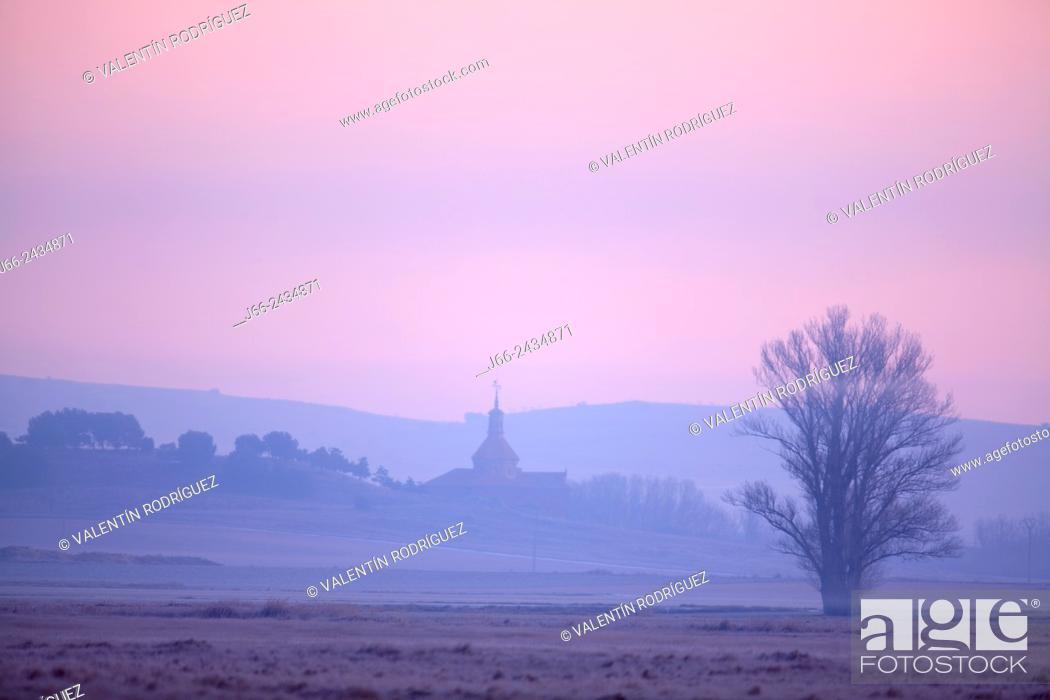 Stock Photo: Landscape at dawn in the Laguna de Gallocanta wildlife reserve, Zaragoza province, Aragon, Spain.