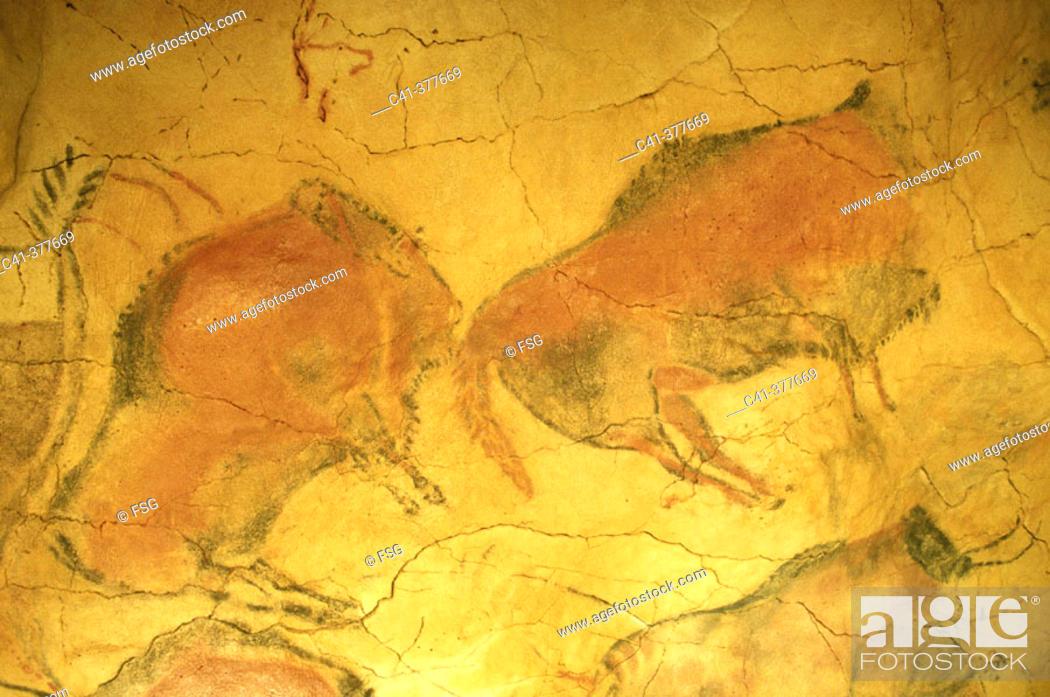 Imagen: Prehistoric painting of the Altamira cave. Santander. Spain.