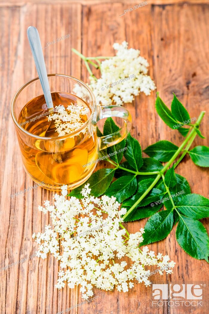 Stock Photo: Elderflower tea.