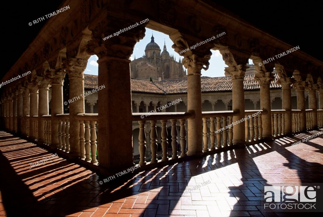 Imagen: Cathedral viewed from the cloisters of Las Duenas Convent, Salamanca, Castile Leon, Spain, Europe.